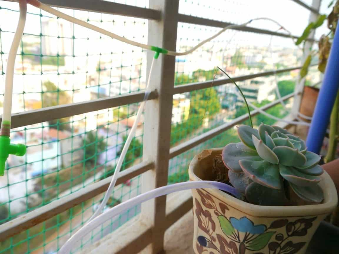 Step 6: Fit the system along a railing and tie it with string for support. If you do not have a railing, place the system on the same level as the plants ...